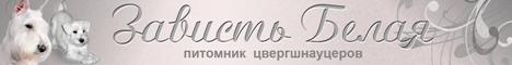 Питомник цвергшнауцеров